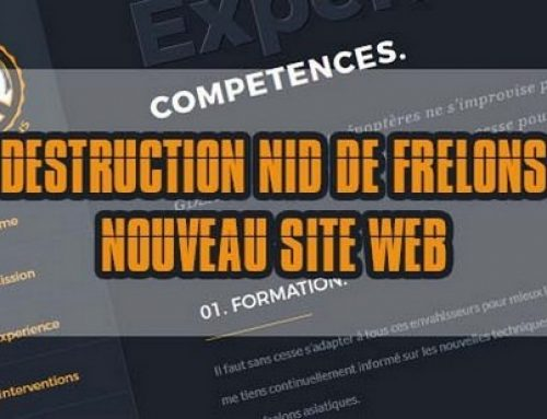Site internet de destruction de frelons