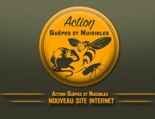 réalisation du site internet Action guêpes et nuisibles